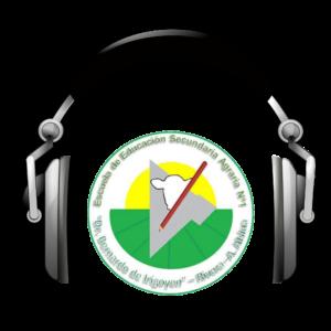 Radio Haciendo Eco